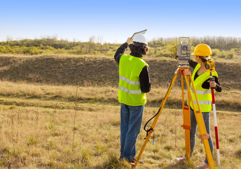 surveyors in the country