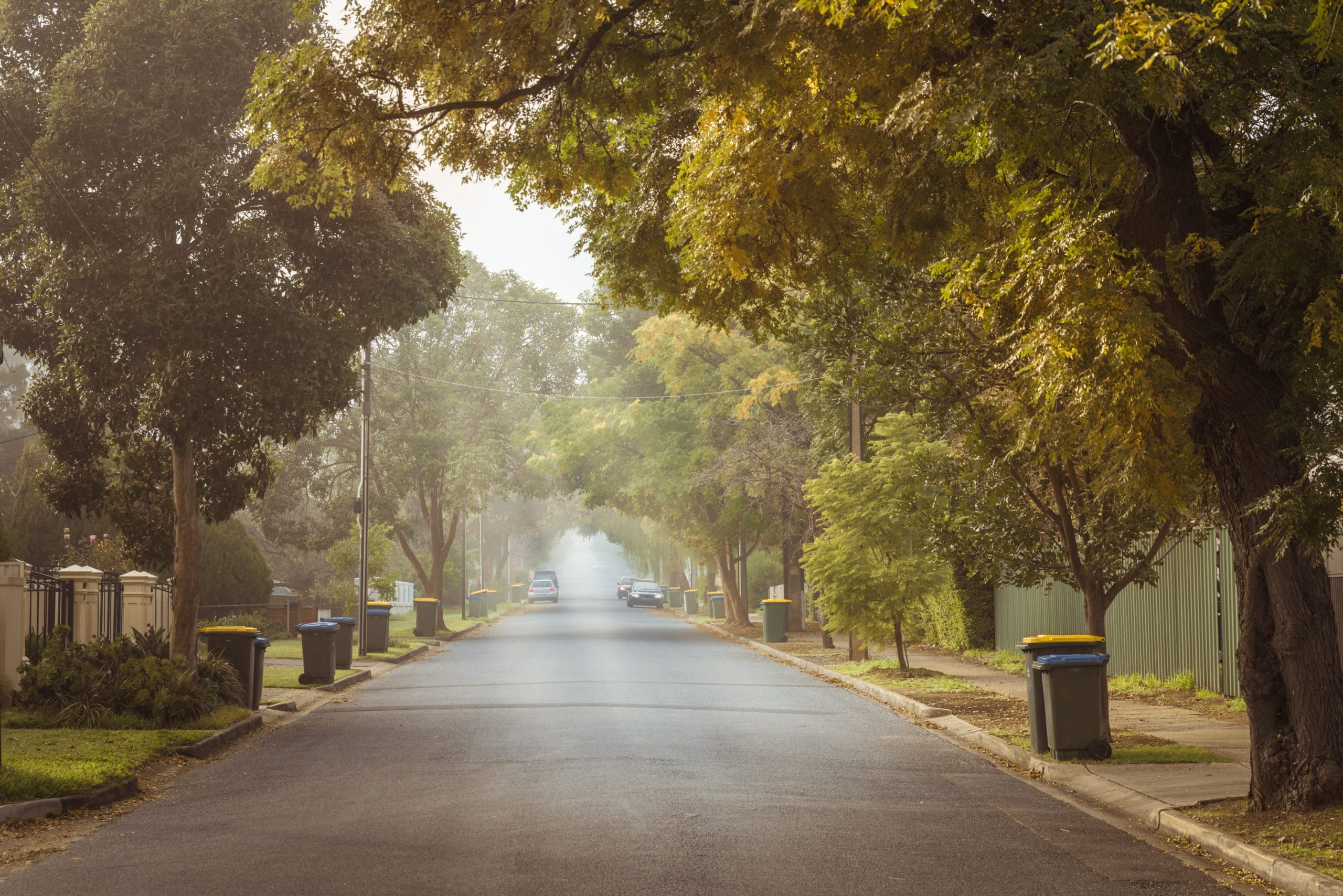adelaide suburban street with bins